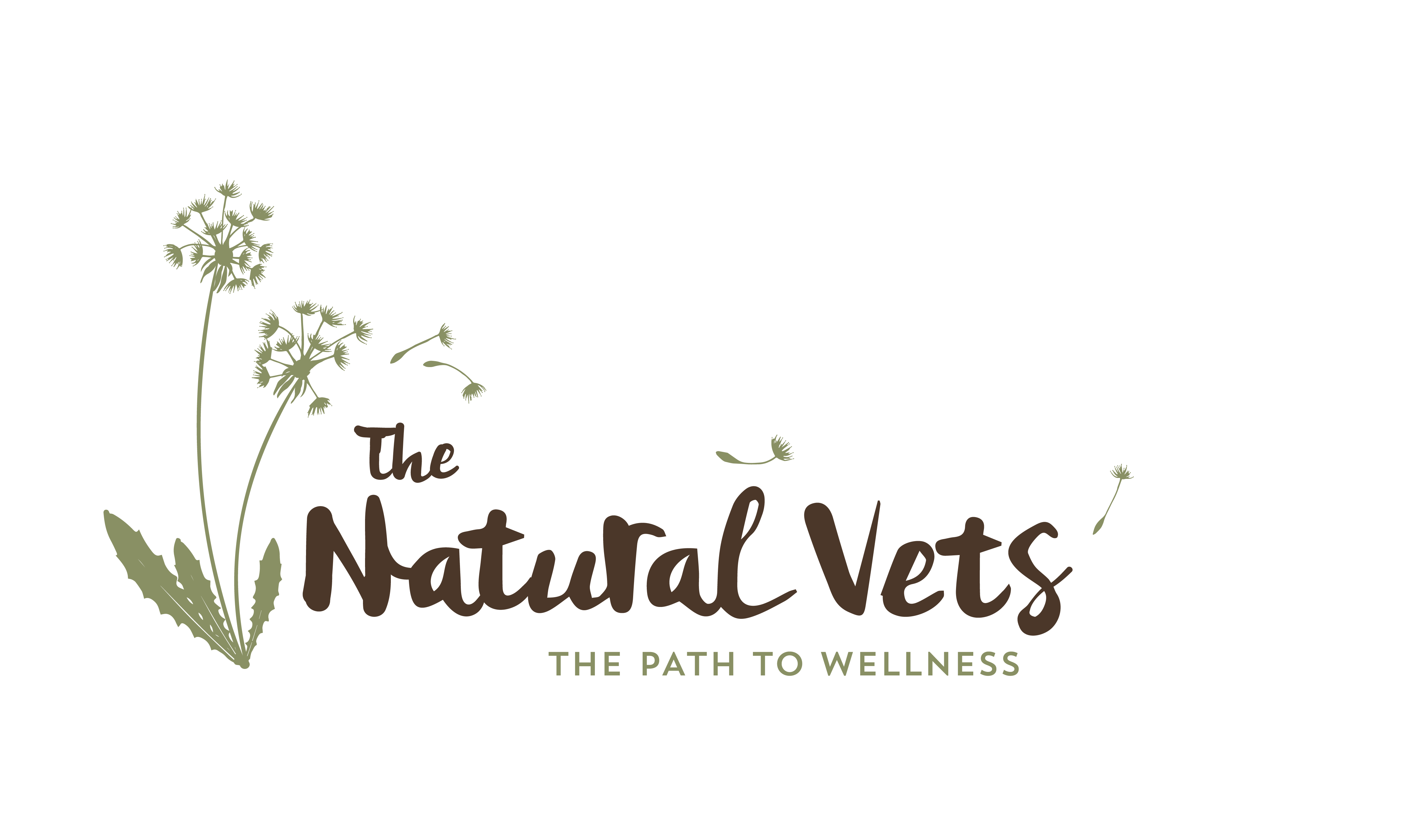 Holistic Vet Sunshine Coast