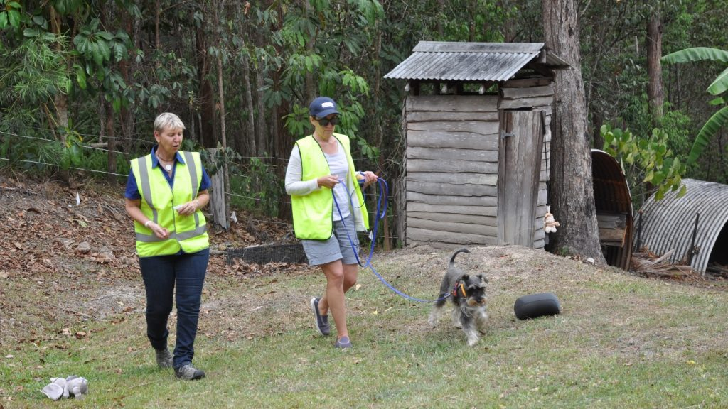 Canine Communication Workshop - Walking Dog on Long Lead Practical - Resized