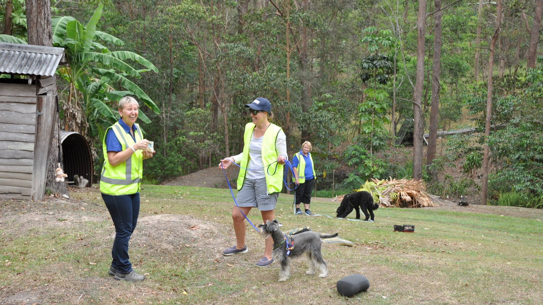 Canine Communication Workshop - Walking Dog on Long Lead - Resized