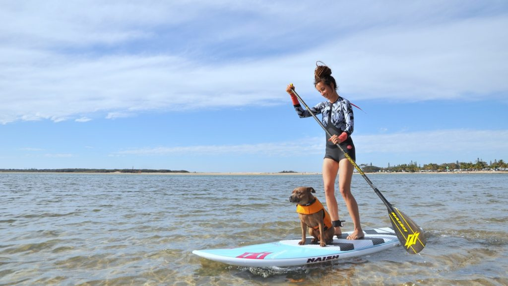 Dog Outdoor Water Adventure SUP 3