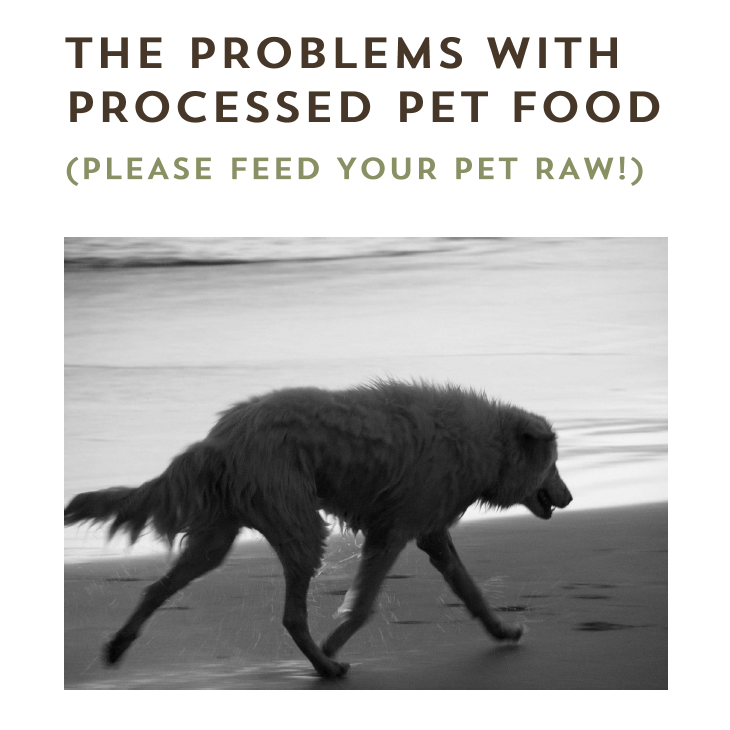 The Problems with Processed Pet Foods eBook - The Natural Vets - Cover - Square
