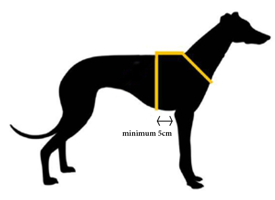 Haqihana Dog Harness Australia - Fitting Guide Size Chart
