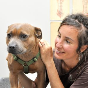 The Natural Vets Sunshine Coast - Dr Renee O'Duhring