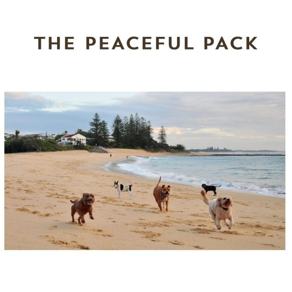 The Peaceful Pack eBook - The Natural Vets - Cover square