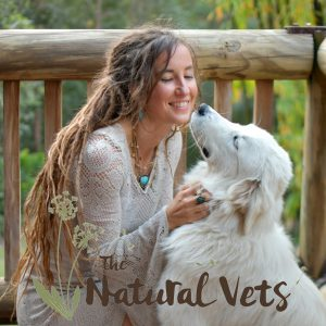 Dr Renee Sunshine Coast Holistic Vet Path to Wellness