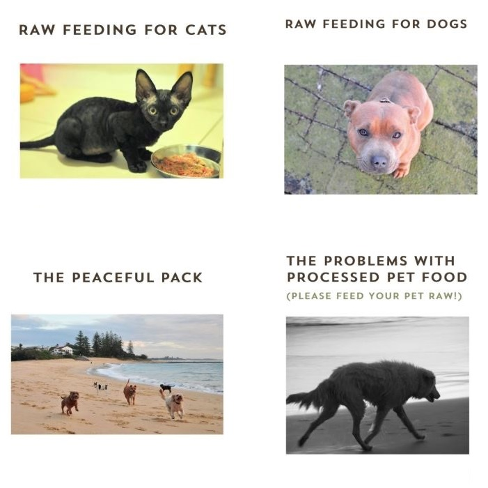The Natural Vets Dog Cat Raw Feeding Diet Pet Food eBooks